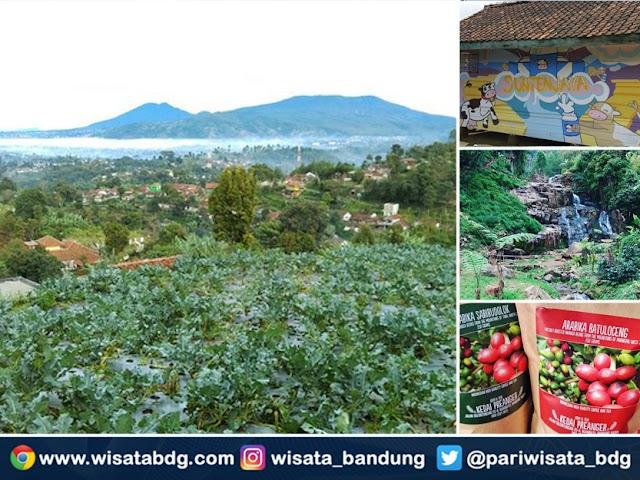Pesona Kampung Wisata Pasir Angling, Cibodas, Lembang