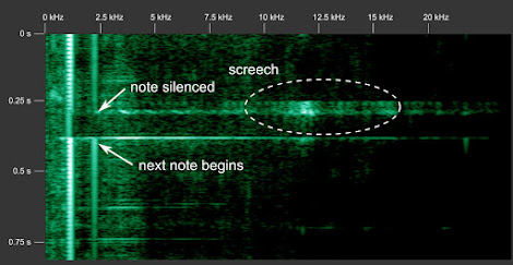 [Image: Spectrogram of the beginning of a note with the characteristic screech, centered around 12 kilohertz.]