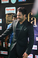 NTR and others Celebs at  at IIFA Utsavam Awards 2017  Day 2   Part 3 ~  10.JPG