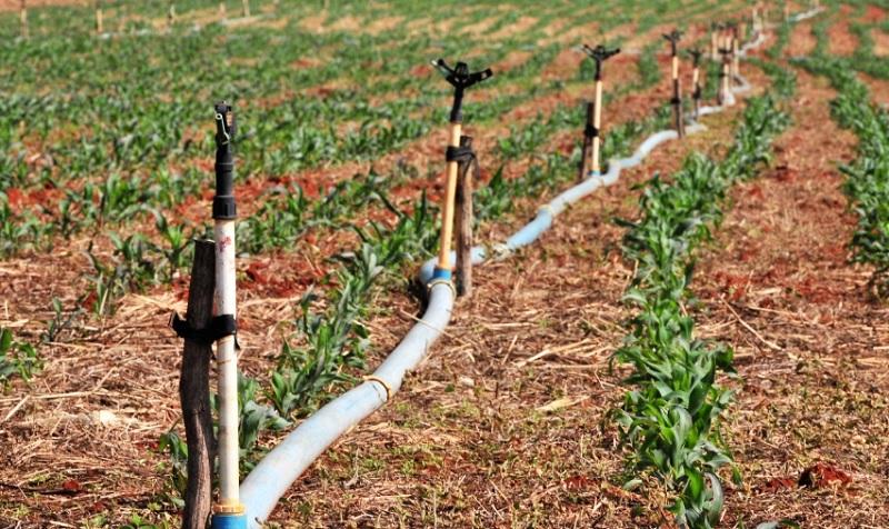 Embrapa Agricultura deve se preparar para possível falta de água no futuro - Portal Spy