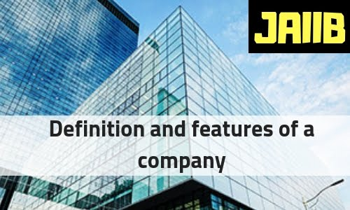 Definition and features of a company