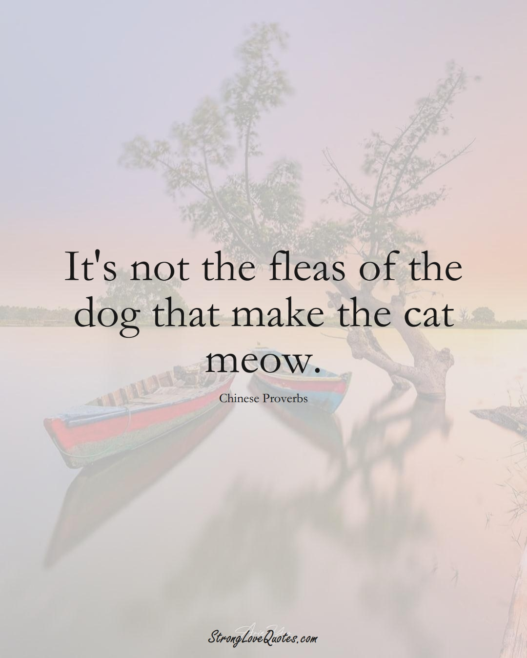 It's not the fleas of the dog that make the cat meow. (Chinese Sayings);  #AsianSayings