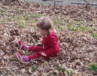 Lots of fun in the leaves
