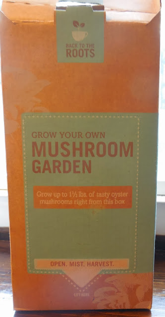 Grow Your Own Mushroom Garden