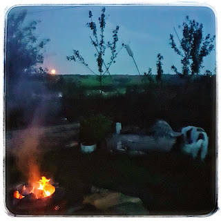 An orange full moon on the horizon, a fire flickering, a lazy spaniel sniffs grass.