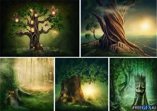 Enchanted Dark Forest 11 Background