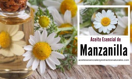 El aceite esencial de manzanilla se utiliza en aromaterapia el cuidado de la piel