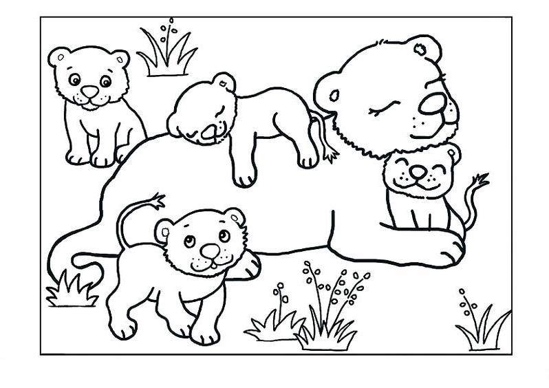 Tranh tô màu gia đình con sư tử xinh