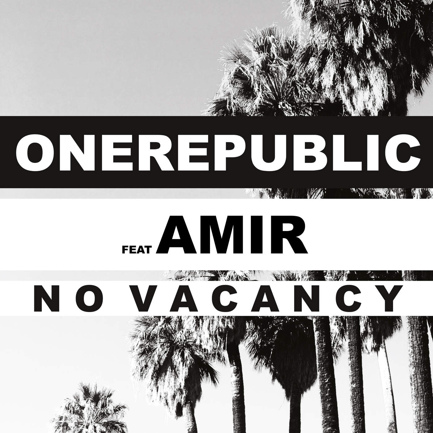 OneRepublic - No Vacancy (feat. Amir) [French Language Version] - Single Cover