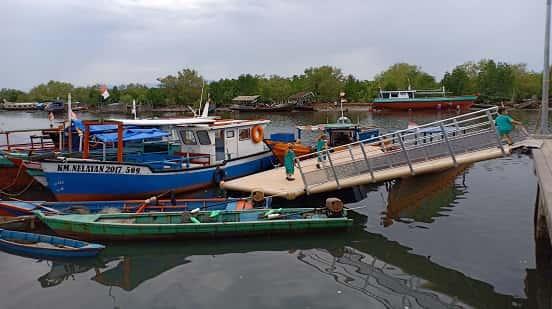 wisata mangrove yang baru