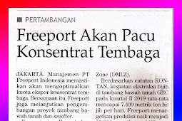 Freeport Will Spur Copper Concentrate