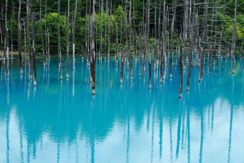 blue pond, hokkaido blue pond, bluepond, blue pond hokkaido japan, shirogane blue pond japan, pond with blue water, pond blue,