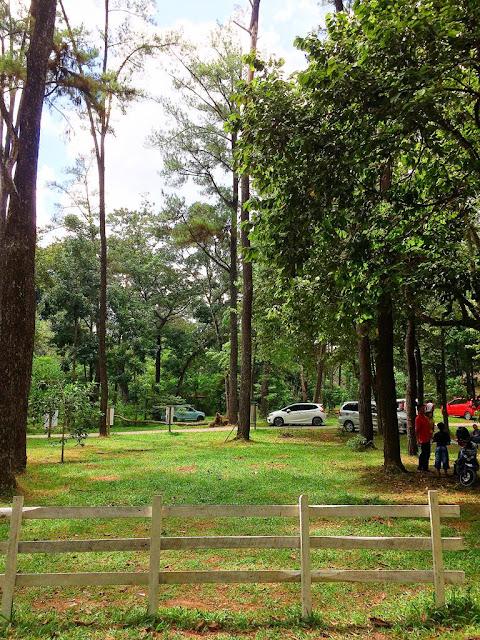 wisata alam punti kayu di palembang