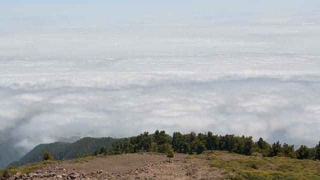 Fotografia de viajes. La Palma