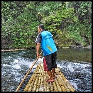 Bamboo rafting sambil melihat hutan