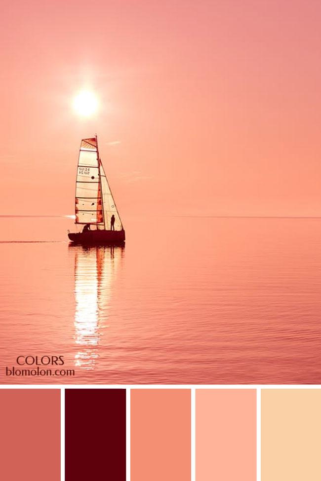 paletas_de_colores_21_variedad_de_color_4