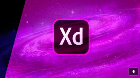 DraddX: 2019
