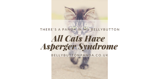 All Cats Have Asperger Syndrome www.bellybuttonpanda.co.uk