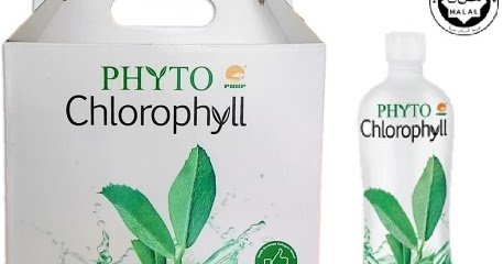 no chlorophyll no life essay Process of photosynthesis essay that contain the pigment chlorophyll convert light energy into life as we know it continue if there were no.