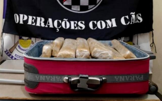 Menina de 15 anos trazia mala com 20 kg de maconha do MS para Tangará da Serra