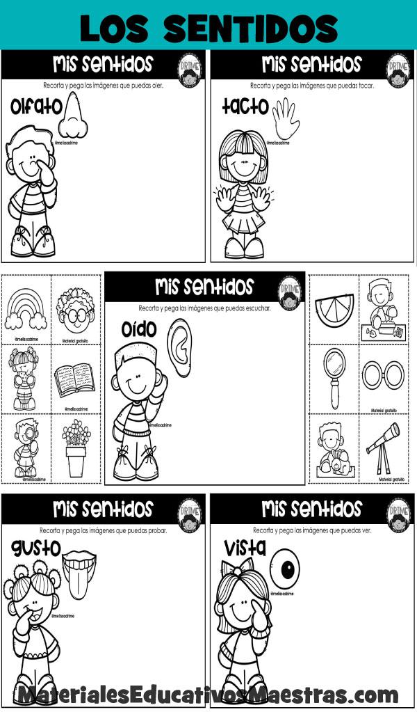Fichas-trabajar-cinco-sentidos