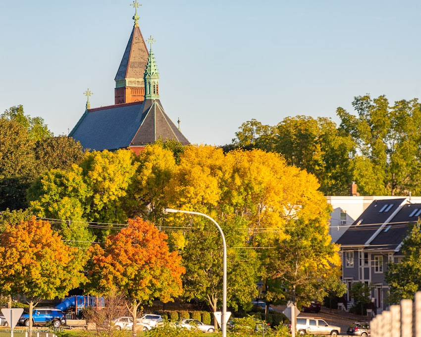 Portland, Maine USA September 2019 photo by Corey Templeton. Fall colors kicking into gear in the West End.