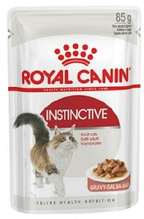 10 Merk Makanan Kucing yang Bagus Dengan Harga Terjangkau