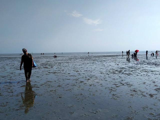 orang berkumpul di tengah pantai morib surut