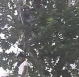 Boy Suicide In Matara