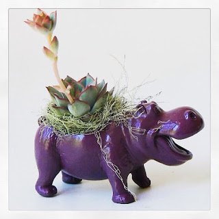 Succulent Planter Centerpiece - Purple Hippo Animal Planter - Desk Accessory - Modern Valentine Gift party table shower birthday