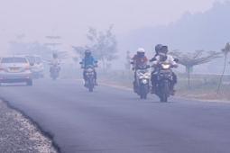 Selain Riau Kabut Asap juuga menyelimuti Palangkaraya
