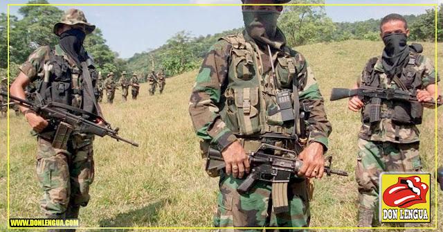 Capturados 5 paramilitares en Táchira portando 3 cabezas humanas