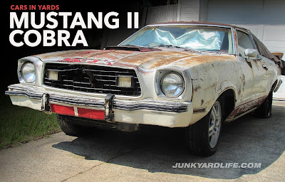 Grill front bumper of white and red 1977 Mustang II Cobra II