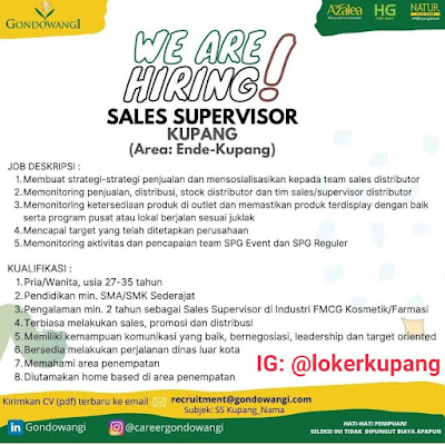 Lowongan Kerja Gondowangi Sebagai Sales Supervisor Area Ende-Kupang