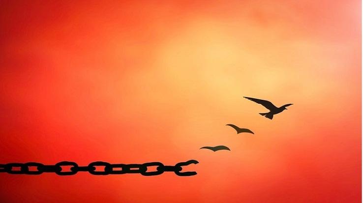 Kisah Narapidana Tak Bersalah dengan Aksi Memaafkan Luar Biasa