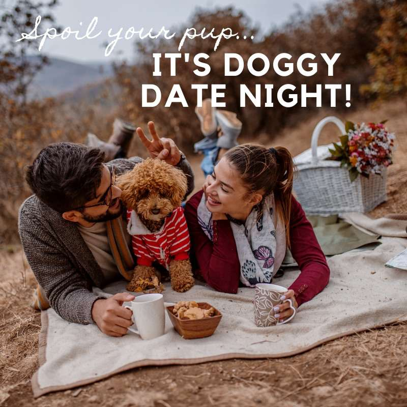 Doggy Date Night Wishes For Facebook