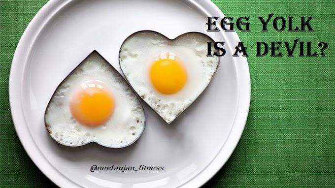 Egg Yolk & Cholesterol