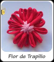 Flor de trapillo