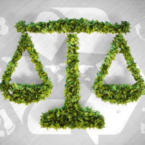 [Environment Day Special] Protecting the environment through laws by Harshit Kiran