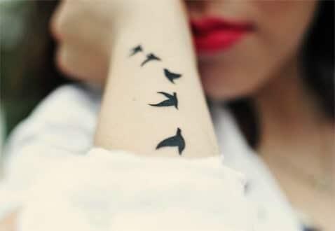 cardinal tattoo small