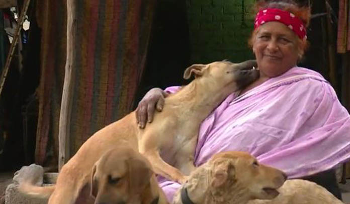 This Story Of A 65-Year-Old Ragpicker Who Takes Care Of 400 Stray Dogs Teaches Us A Great Lesson In Humanity