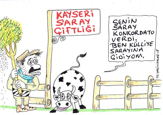 kayseri saray çiftliği karikatürü