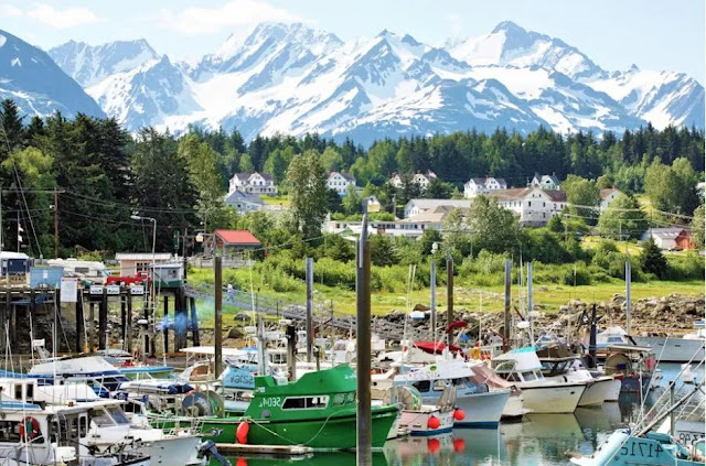 The best Attractions & Things to Do in Haines, Alaska