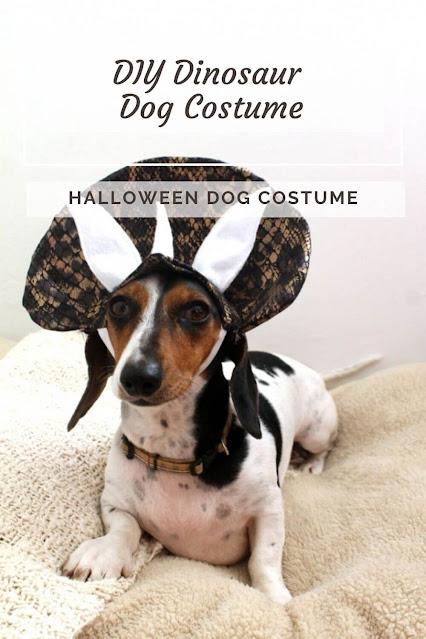 DIY Dinosaur Dog Costume
