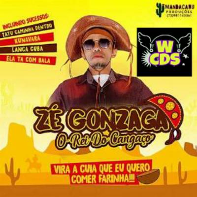 https://www.aquelesom.com/download/ze-gonzaga-o-rei-do-cangaco-100-qualidade-pra-paredao