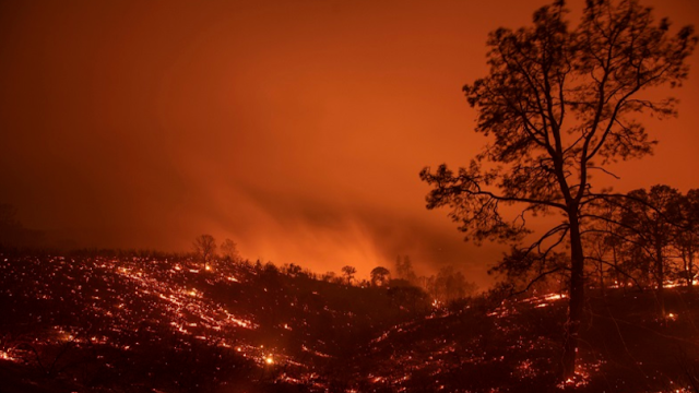 Earth at risk of heading towards 'hothouse Earth' state