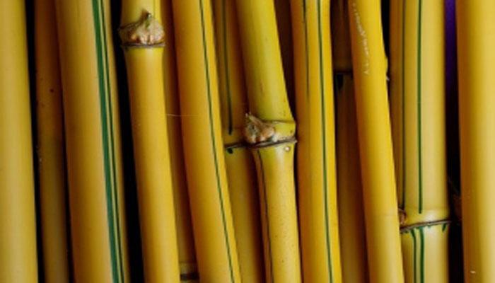 Kerajinan Dari Bambu