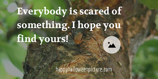 kid halloween quotes and sayings