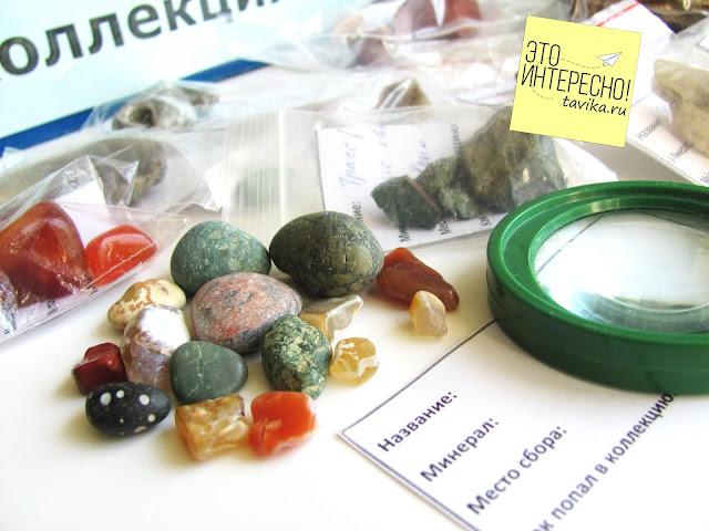 коллекция камней для детей