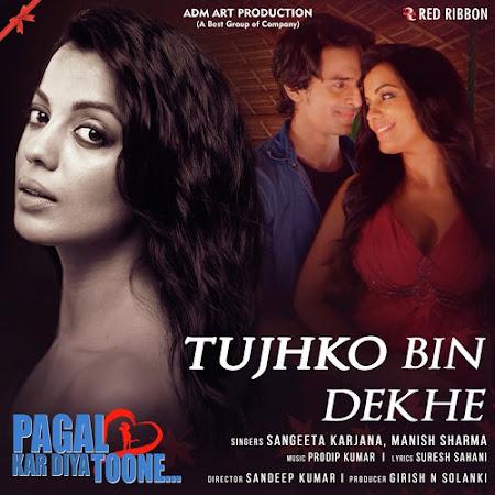 Tujhko Bin Dekhe - Pagal Kar Diya Toone (2018)